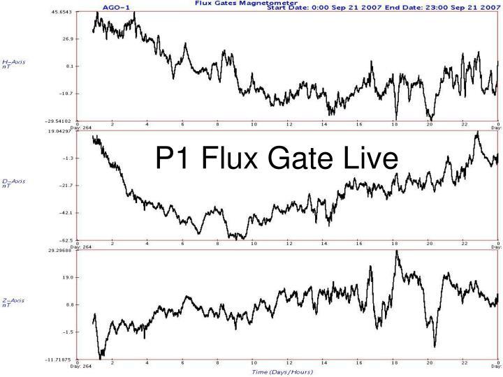 P1 Flux Gate Live