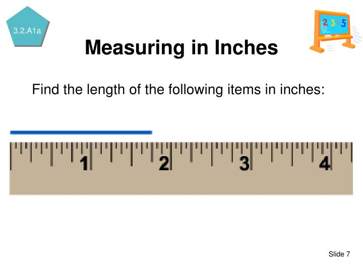 Find the length of the following items in inches: