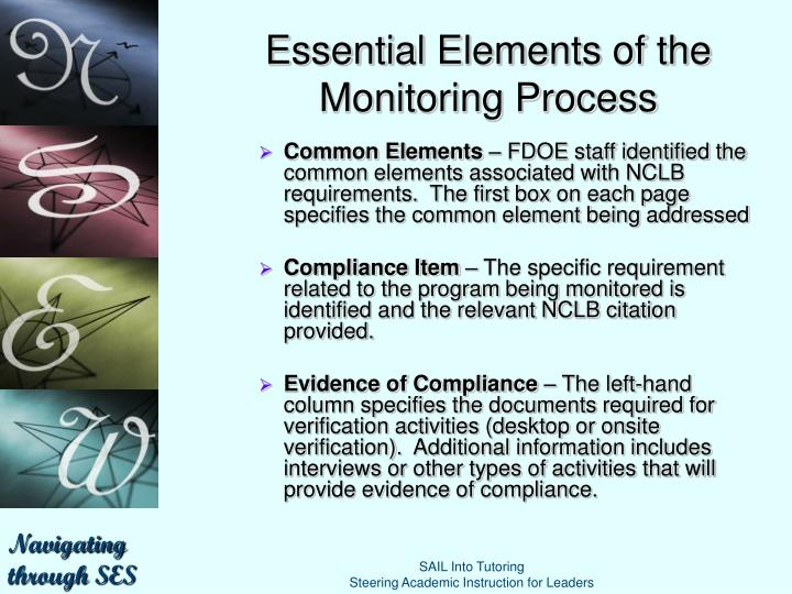 Essential Elements of the Monitoring Process