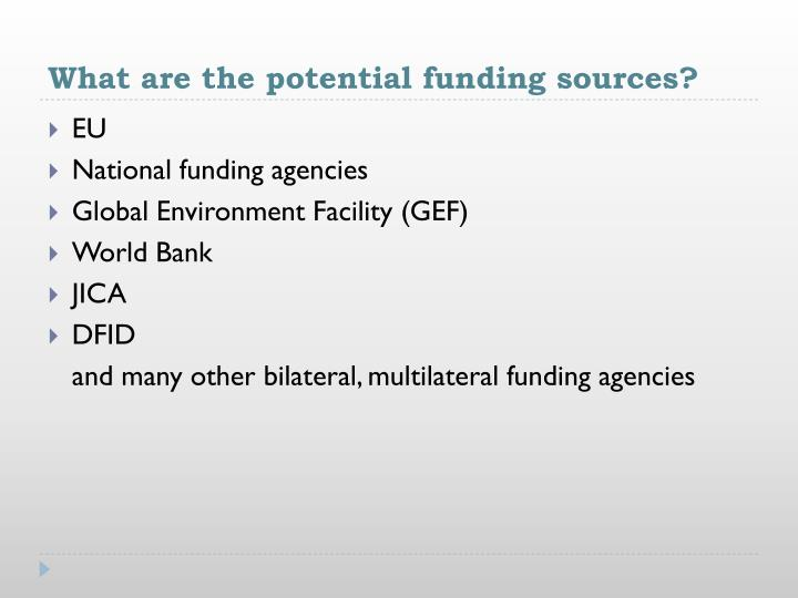 What are the potential funding sources?