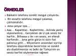 rnekler2