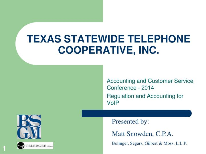 Texas statewide telephone cooperative inc
