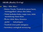 akar radix 13 4 bgl