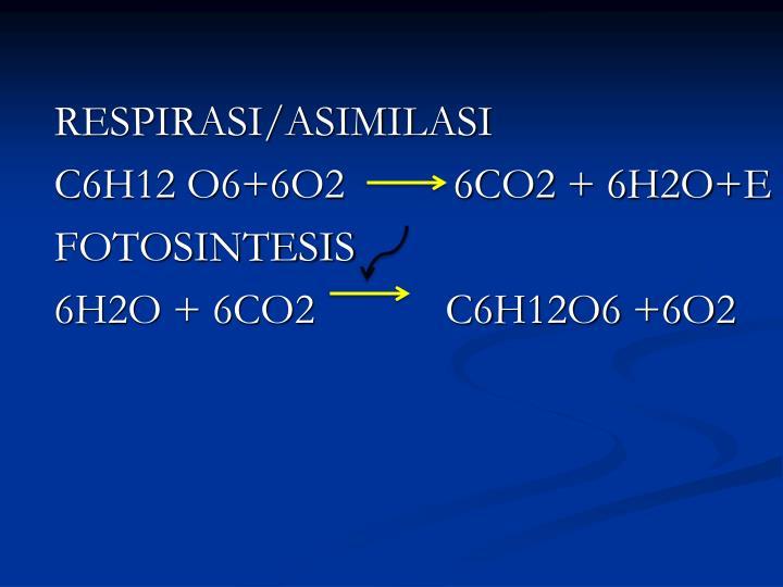 RESPIRASI/ASIMILASI