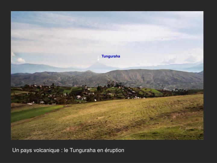Tunguraha