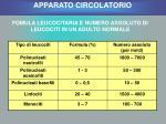 fomula leucocitaria e numero assoluto di leucociti in un adulto normale