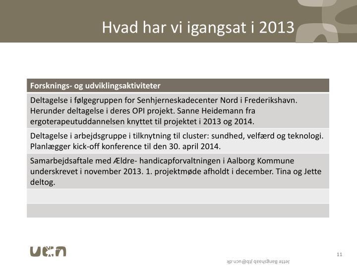 Hvad har vi igangsat i 2013