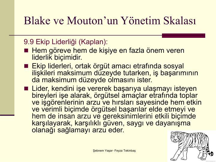 Blake ve Mouton'un Yönetim Skalası