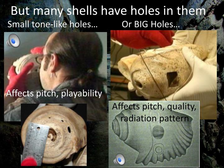 But many shells have holes in them