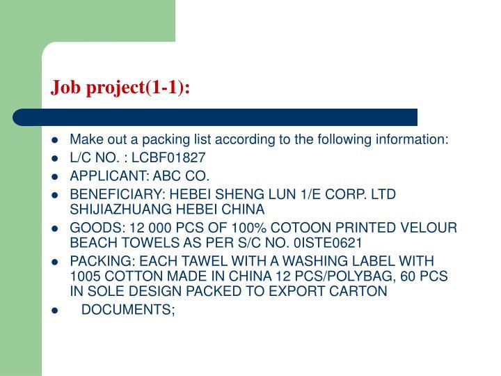Job project(1-1):