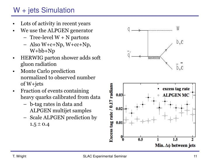 W + jets Simulation