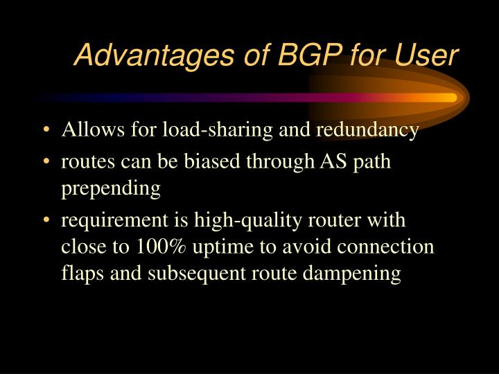 Advantages of BGP for User