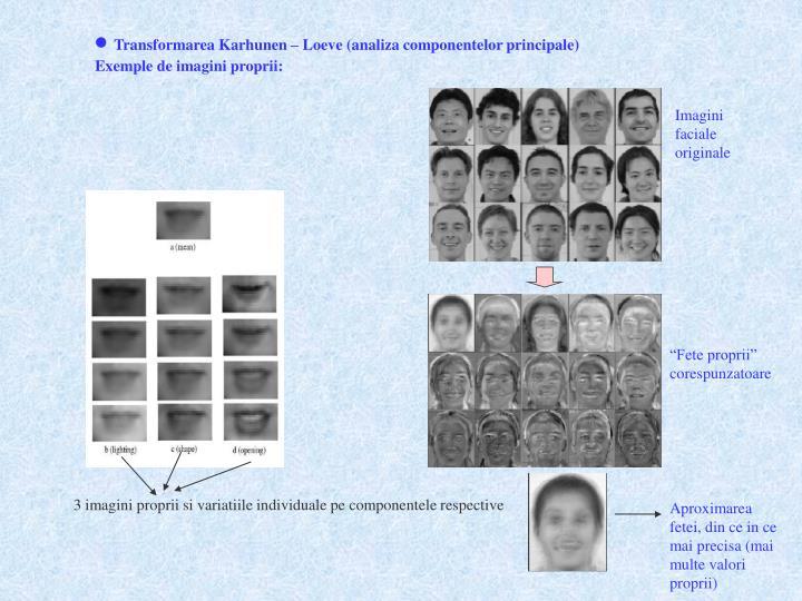 3 imagini proprii si variatiile individuale pe componentele respective