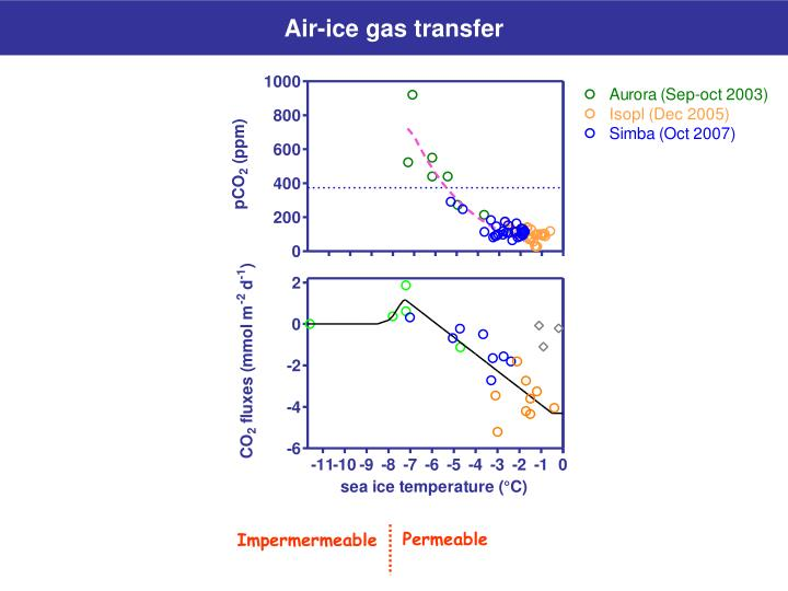 Air-ice gas transfer