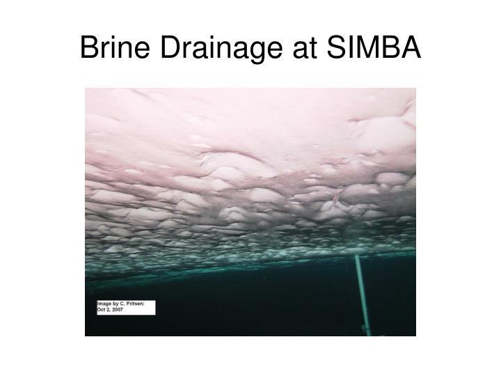 Brine Drainage at SIMBA