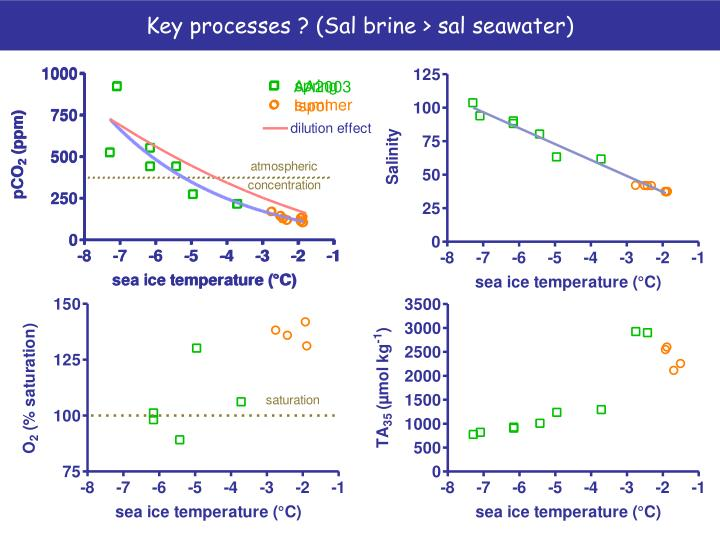 Key processes ? (Sal brine > sal seawater)