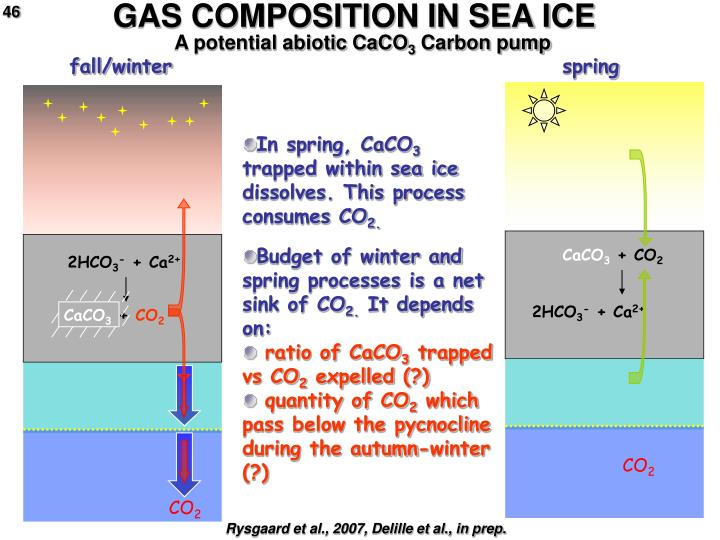 GAS COMPOSITION IN SEA ICE