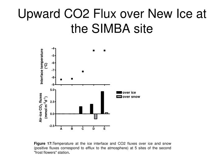 Upward CO2 Flux over New Ice at the SIMBA site