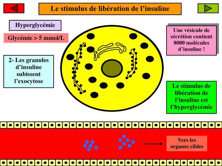 Le stimulus de libération de l'insuline