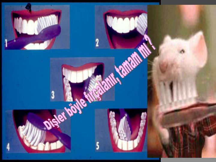 Dişler böyle fırçalanır, tamam mı ?