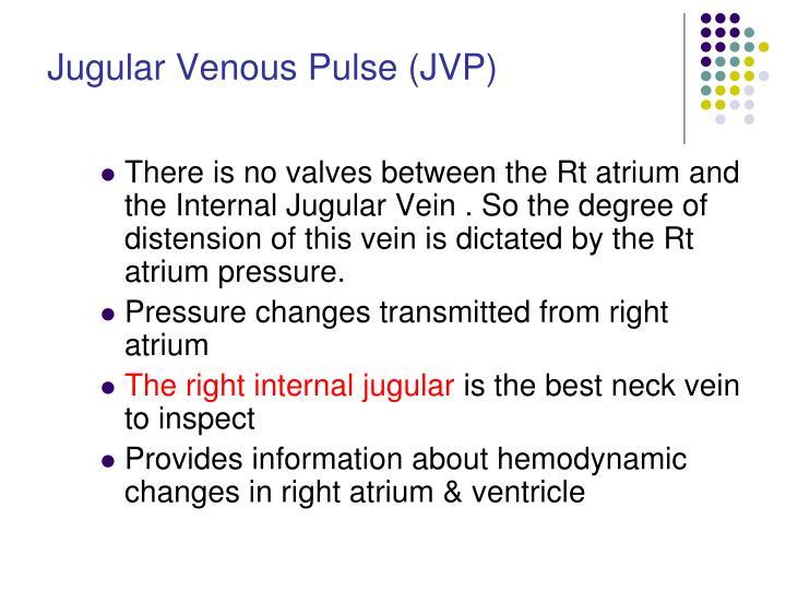 Jugular Venous Pulse (JVP)