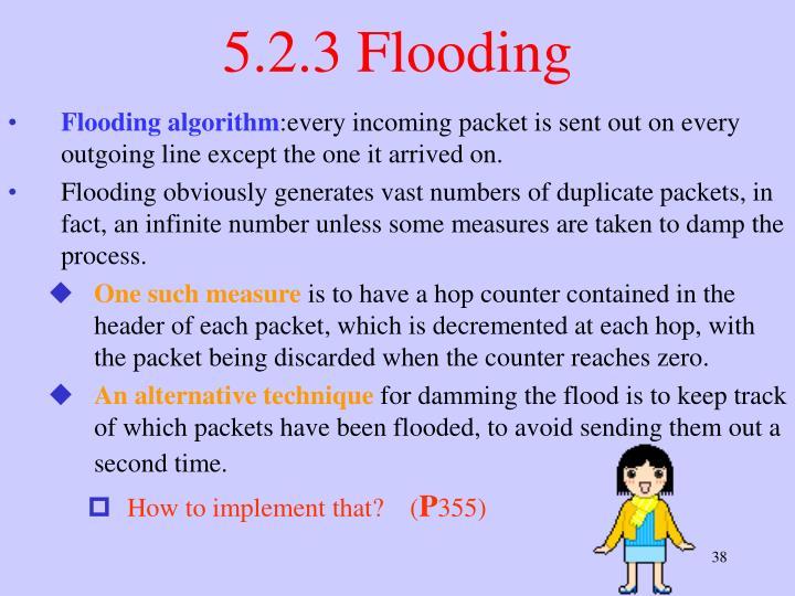 5.2.3 Flooding