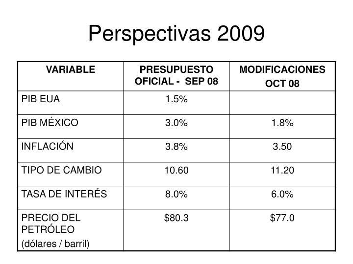 Perspectivas 2009