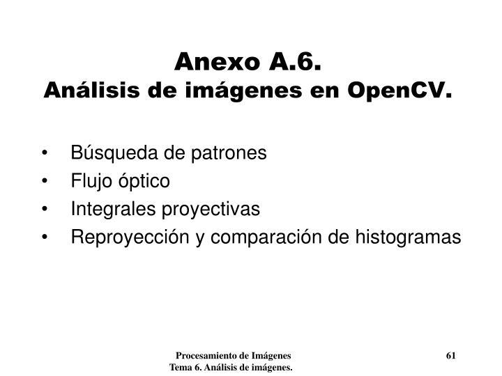 Anexo A.6.
