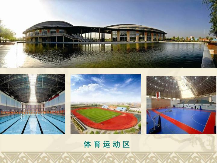 体 育 运 动 区
