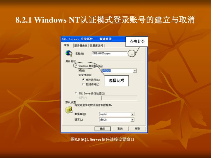 8.2.1 Windows NT
