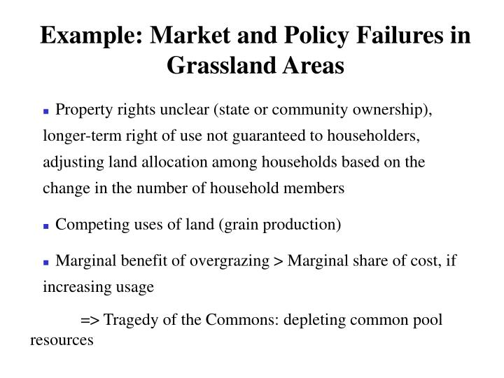 Example: Market and Policy Failures in Grassland Areas