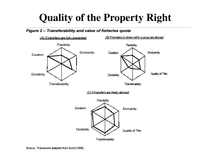 Quality of the Property Right