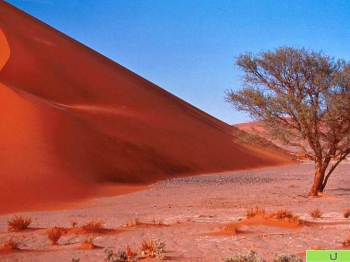 缤纷的沙漠