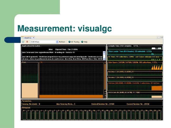 Measurement: visualgc