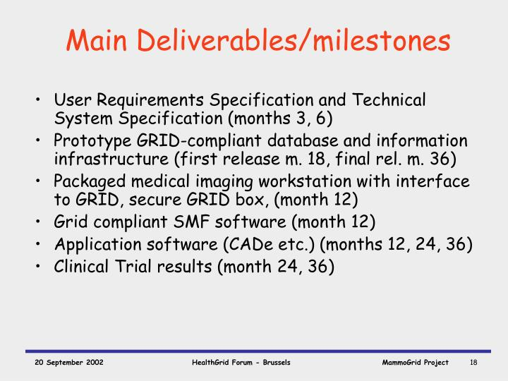Main Deliverables/milestones