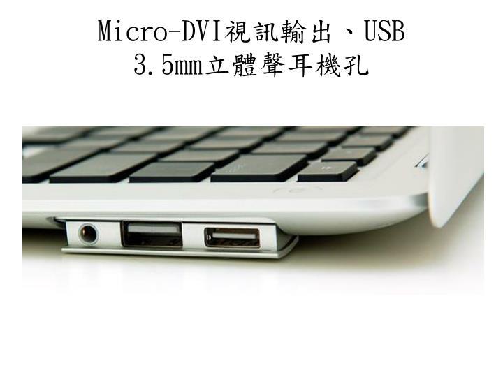 Micro-DVI
