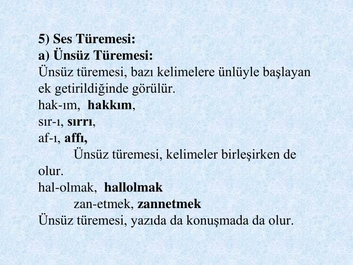 5) Ses Tremesi: