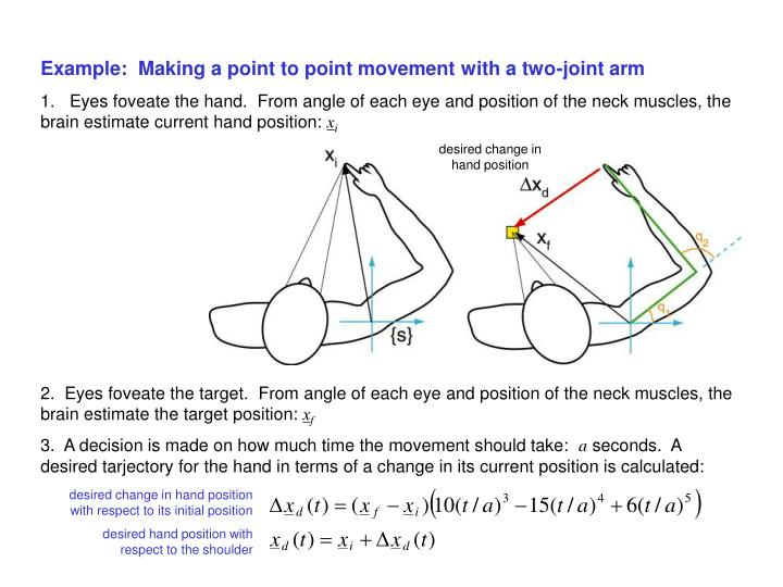 Example:  Making a point to point movement with a two-joint arm
