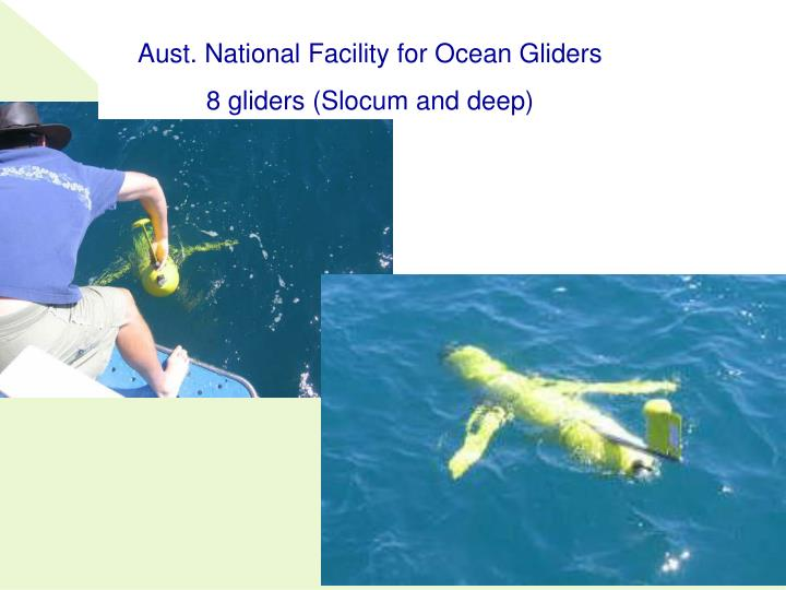 Aust. National Facility for Ocean Gliders
