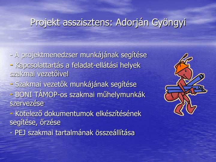 Projekt asszisztens: Adorján Gyöngyi