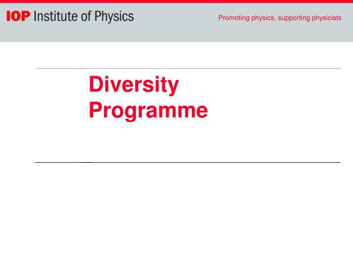 Diversity Programme