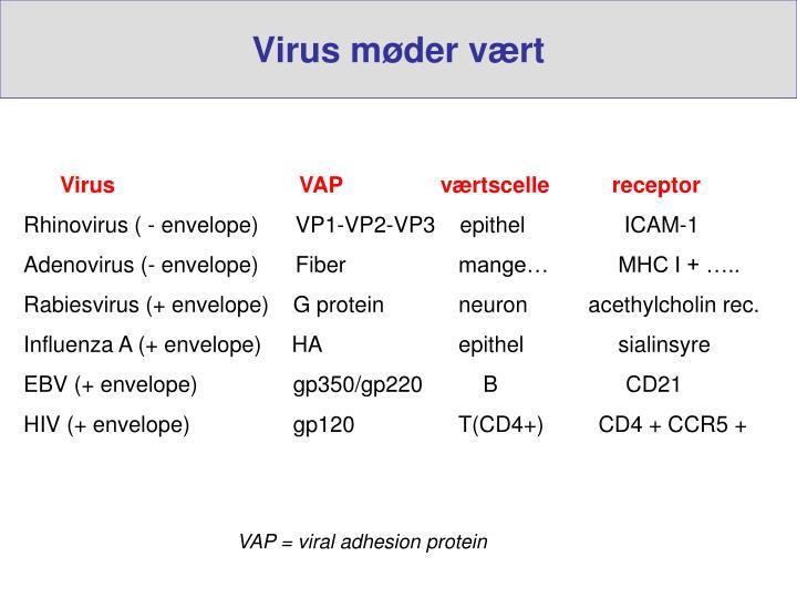 Virus møder vært