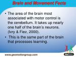 brain and movement facts