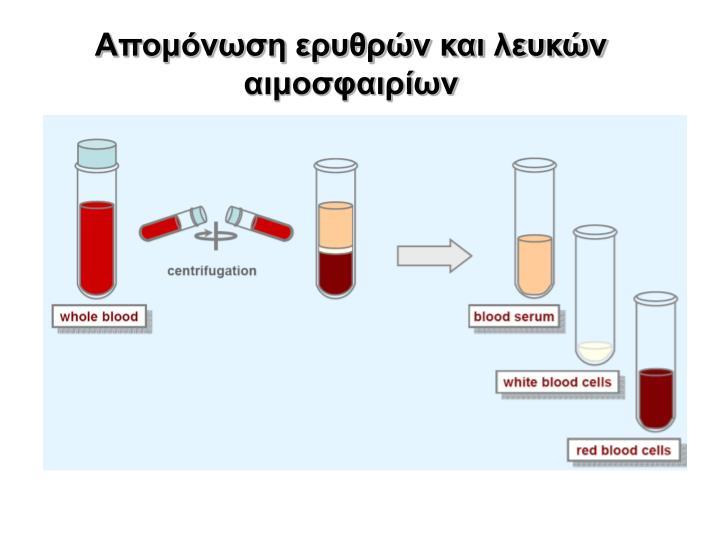 Απομόνωση ερυθρών και λευκών αιμοσφαιρίων