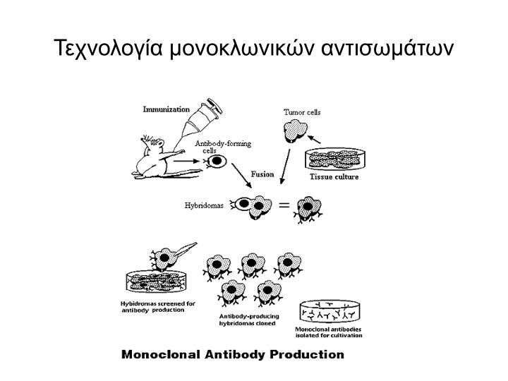 Τεχνολογία μονοκλωνικών αντισωμάτων