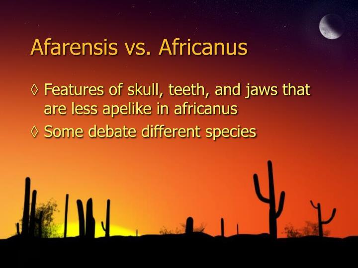 Afarensis vs. Africanus