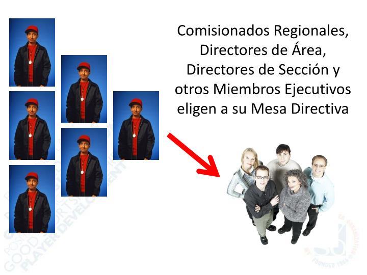 Comisionados Regionales, Directores de Área, Directores de Sección y otros Miembros Ejecutivos eligen a su Mesa Directiva