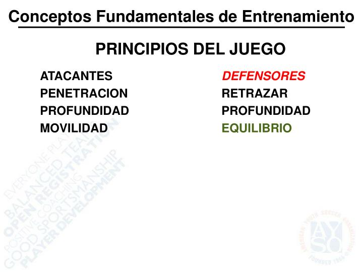 Conceptos Fundamentales de Entrenamiento