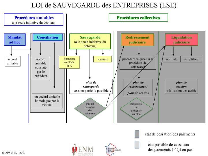 LOI de SAUVEGARDE des ENTREPRISES (LSE)