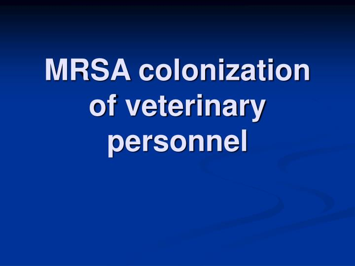 MRSA colonization of veterinary personnel